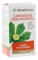 Arkocaps Canadese Geelwortel 45 capsules gezondheidswebwinkel