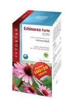Fytostar Echinacea forte 1215 maxi 120 capsules gezondheidswebwinkel