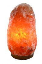 Himalaya zout lamp natuurvorm Gezondheidswebwinkel