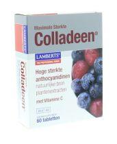 Lamberts Colladeen 60 tabletten gezondheidswebwinkel