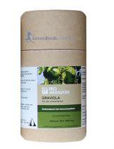 Rio Amazon Graviola gezondheidswebwinkel.jpg